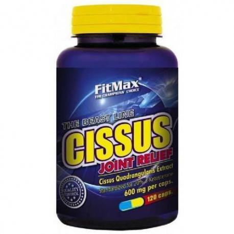 FitMax - Cissus - 120 kaps.